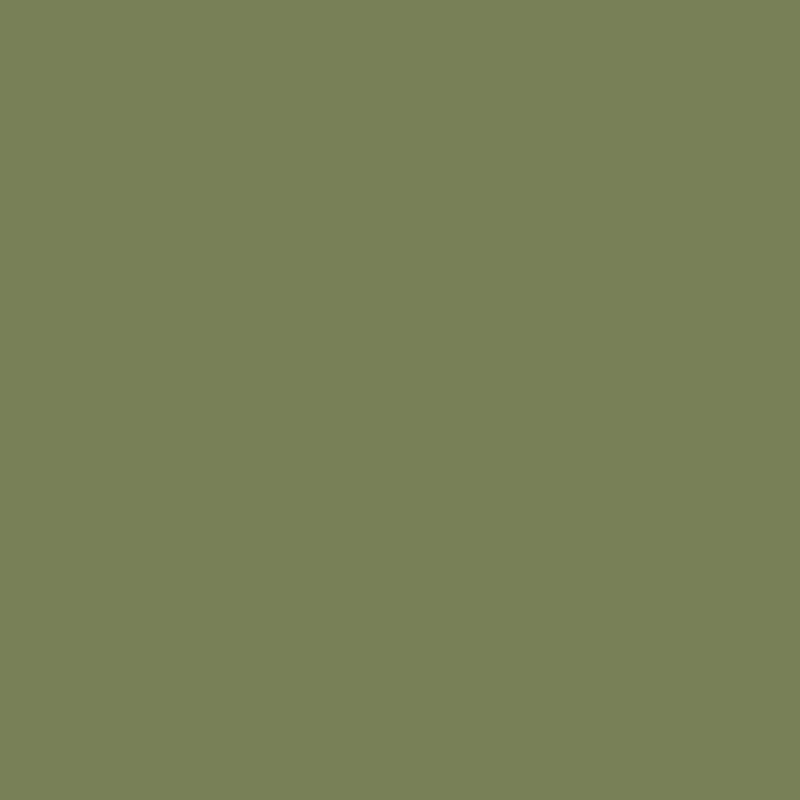 schilfgrün RAL 6013