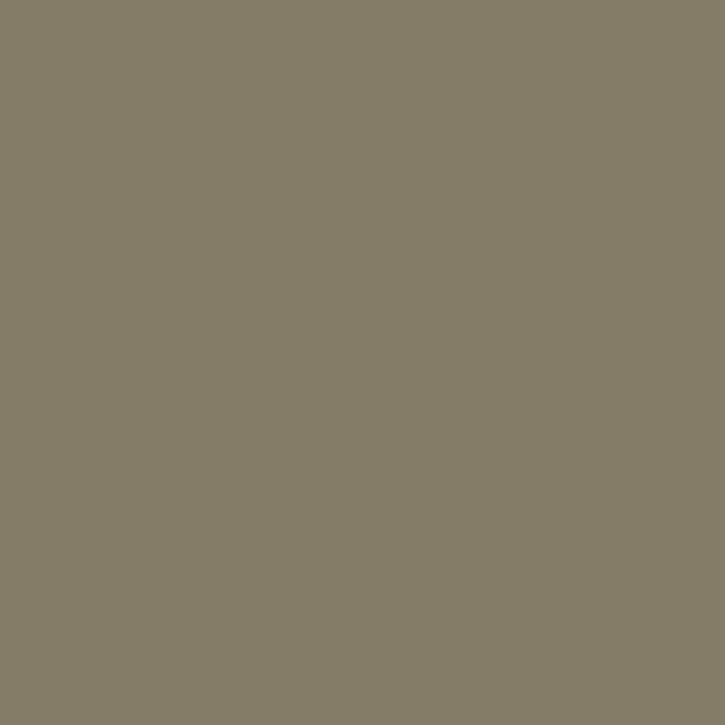 beigegrau RAL 7006
