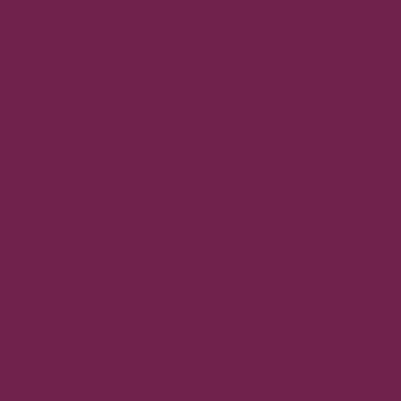 bordeauxviolett RAL 4004