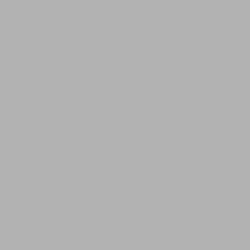 weißaluminium RAL 9006